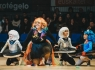 donostitik-carnaval-illunbe-2018-060