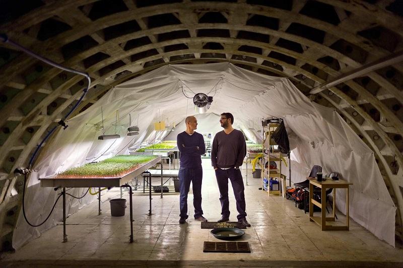 Cultivos de verduras a 30 metros bajo el suelo de Londres y de la mano de Growing Underground. Foto: Growing Underground