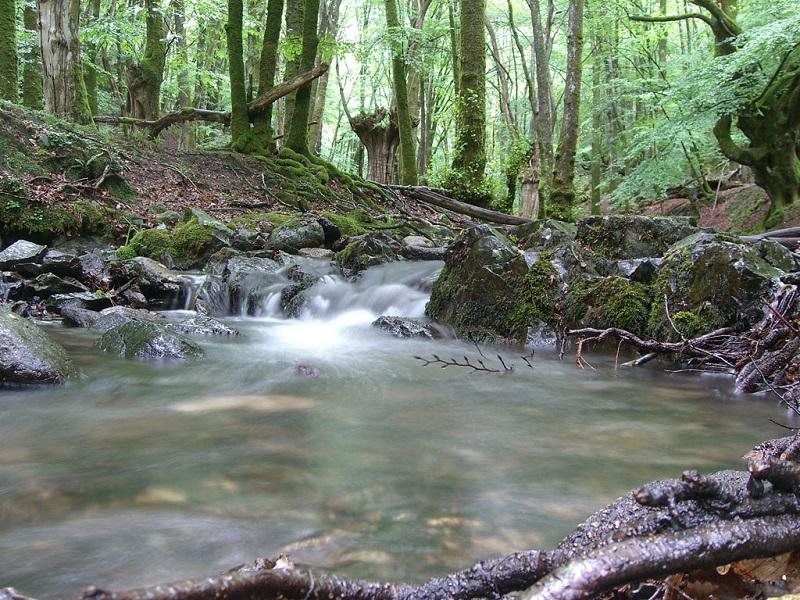 Foto: Rutas por Gipuzkoa.com