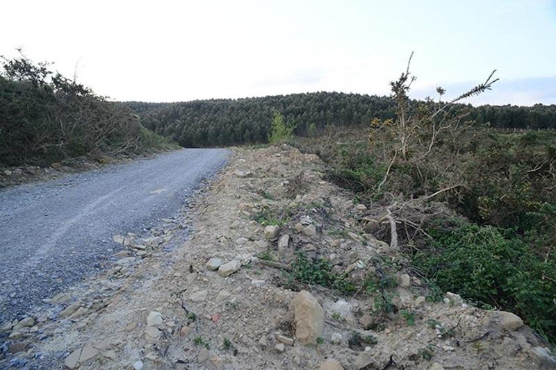 Las obras han afectado a paisaje y vegetación. Fotos: Eguzki.