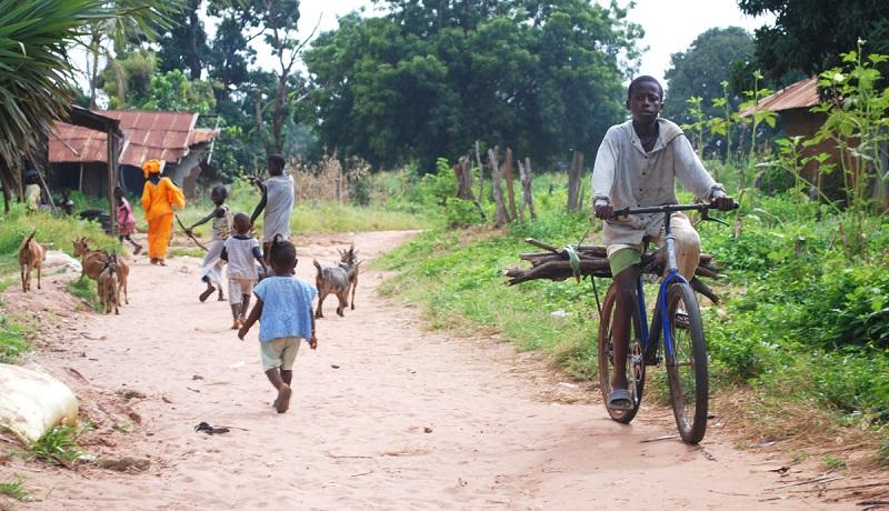 Irudia: www.ecoclimatico.com.