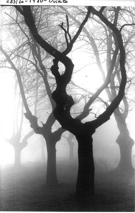 'Niebla en Oñate' de Antton Elizegi.