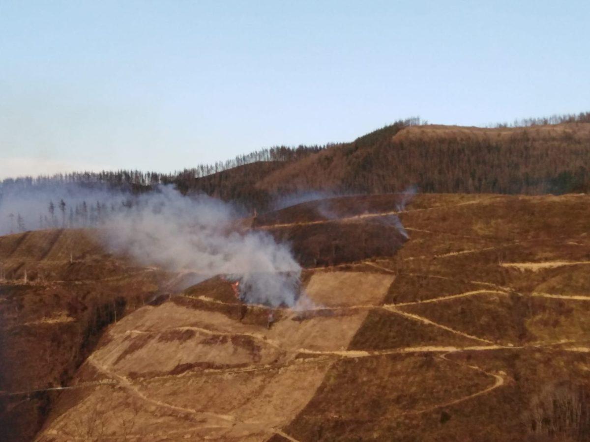 Superficie quemada en el Alto de Azkarate. Foto: Gipuzkoako basozainak