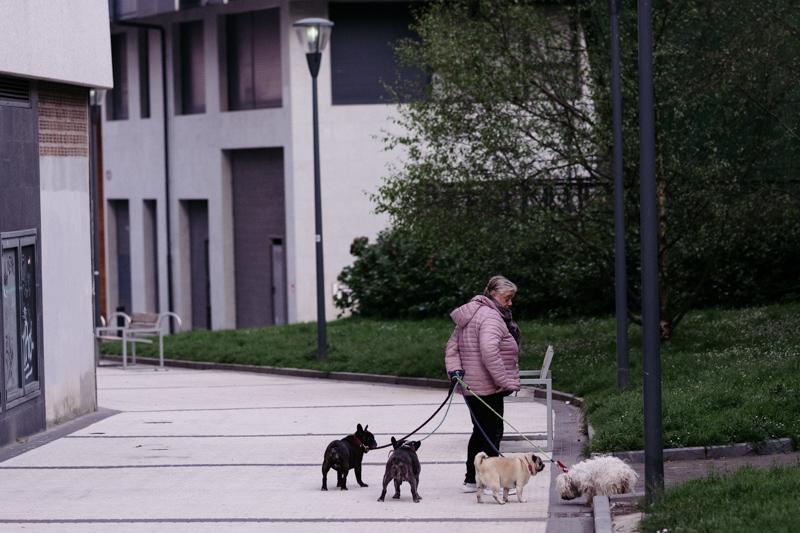 Una mujer pasea a varios perros en Donostia durante el confinamiento. Foto: Santiago Farizano