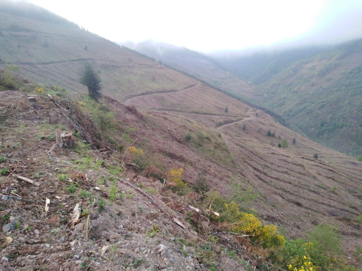 Valle de Kartola, Hernani. Foto: Haritzalde