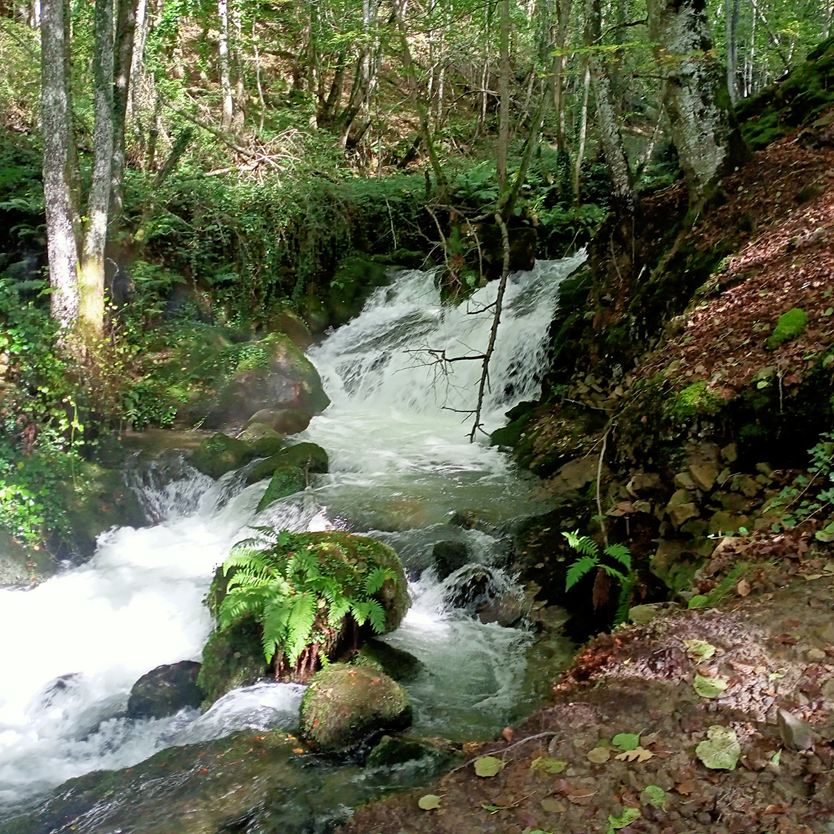 Cascada en el río Zirauntza