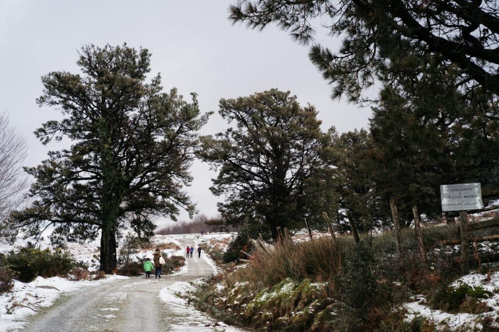 DSCF7560 1024x682 - Persistirán en Gipuzkoa las nevadas en cotas bajas varios días
