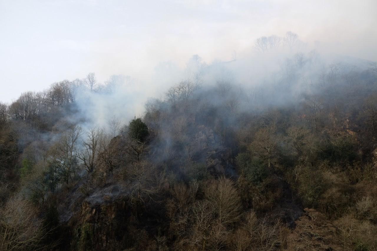 2021 0221 10371600 copy 1280x853 - El fuego arrasa 300 hectáreas en Gipuzkoa pero la previsión es mejor