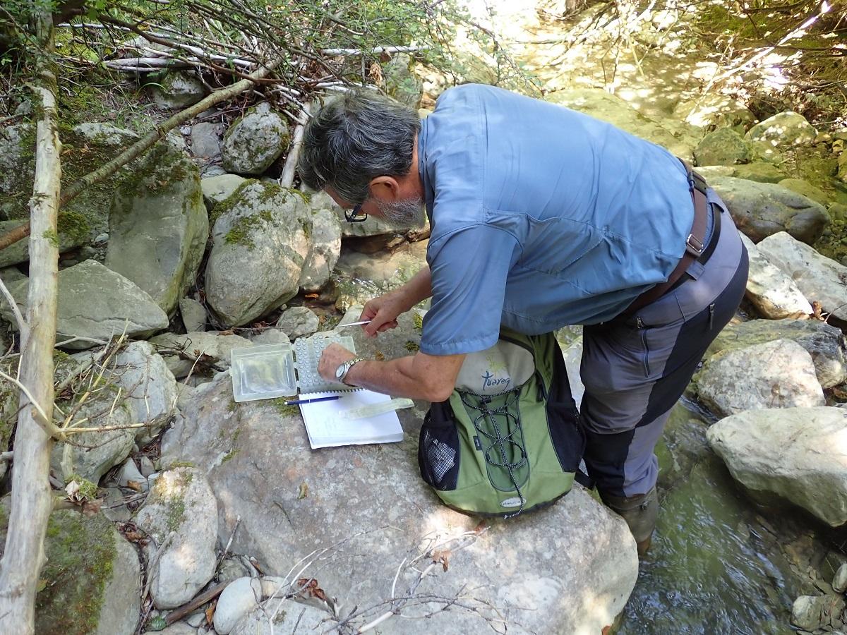 Herpetólogo de Aranzadi trabajando en la investigación sobre este virus. Foto: Aranzadi