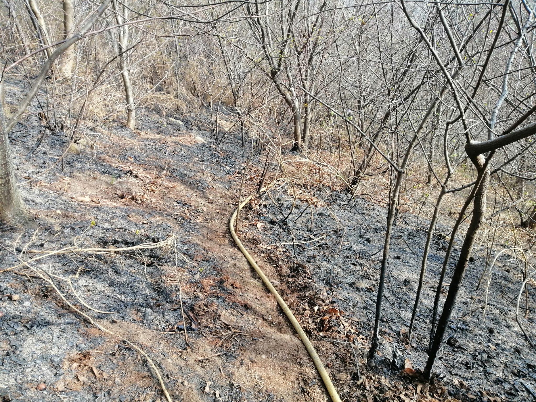 Imagen de la zona quemada. Foto: Bomberos de Euskadi