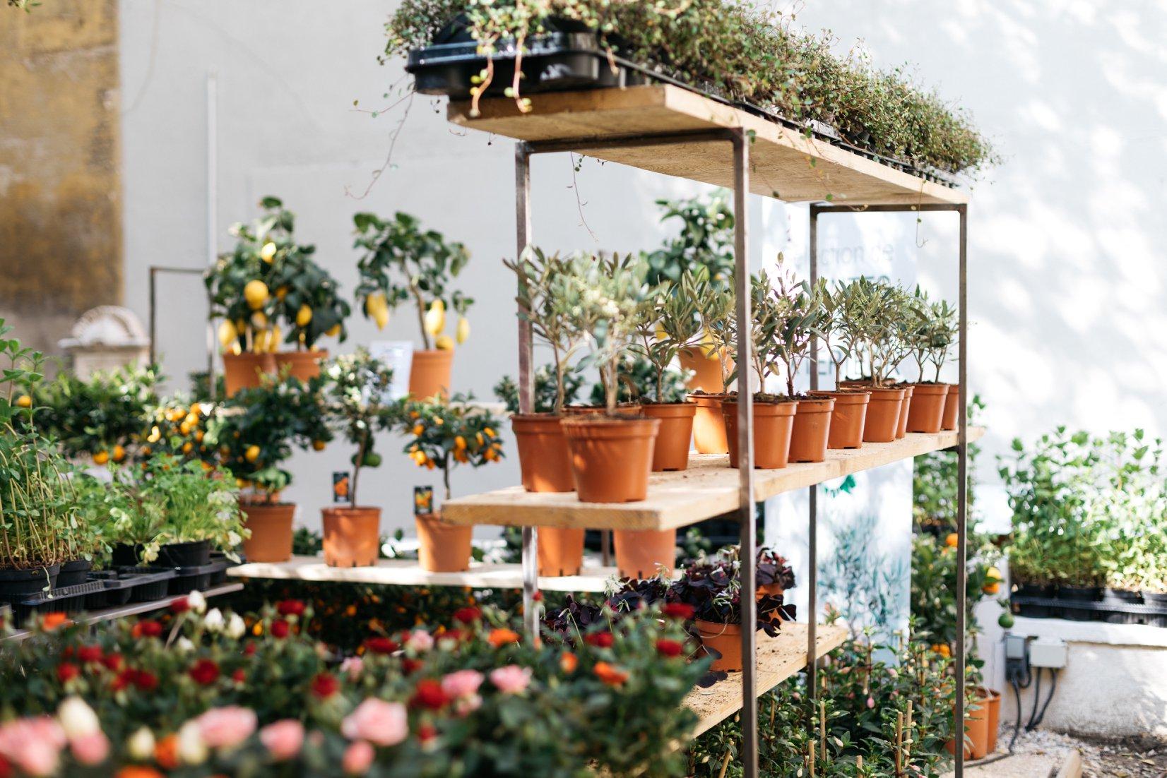 Maison Bouture presenta un jardín efímero en Donostia