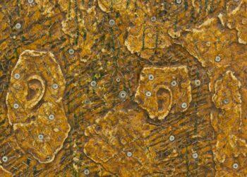 'Cold ears' de Oier Iruretagoyena. Imagen: San Telmo Museoa