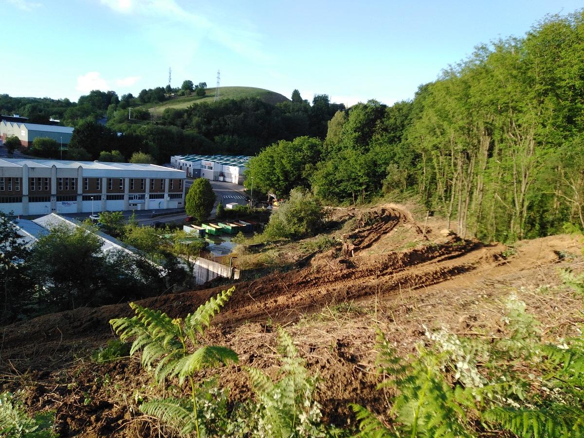 Haritzalde3 - Ecologistas acusan a la Diputación de destruir un robledal en Donostia