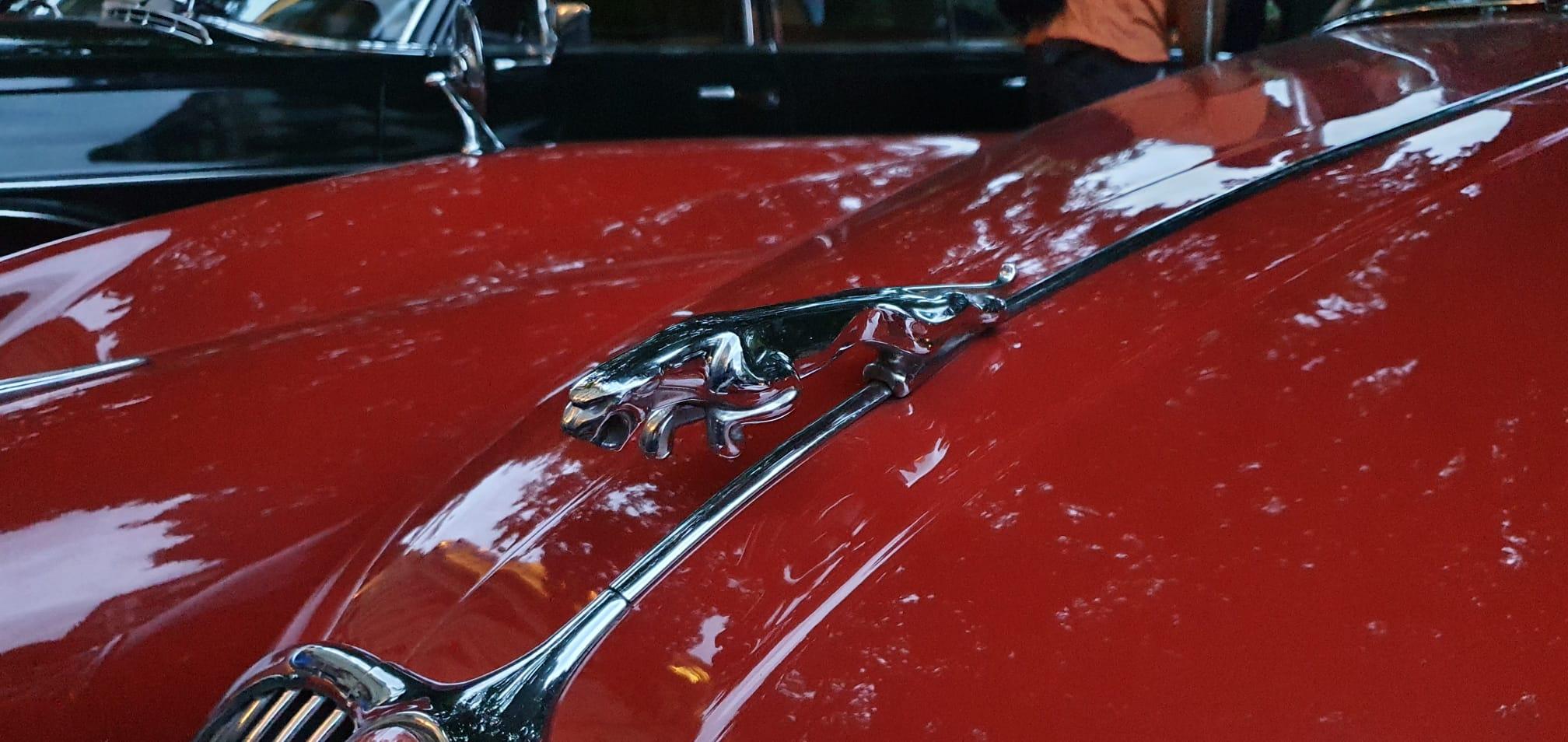 Alonso2 - Los coches con más glamour se han visto en Gipuzkoa
